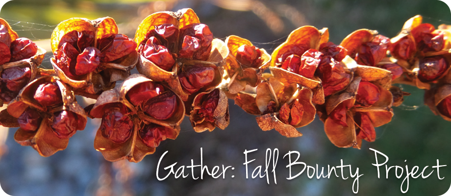 Gather Fall Bounty Project