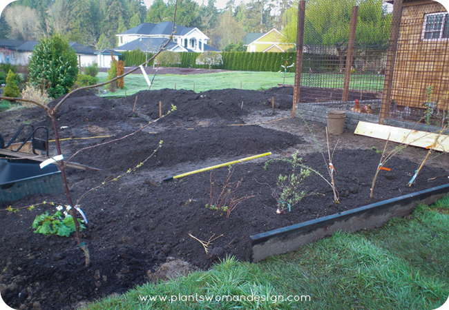 yes-progress-raised-garden-beds-002