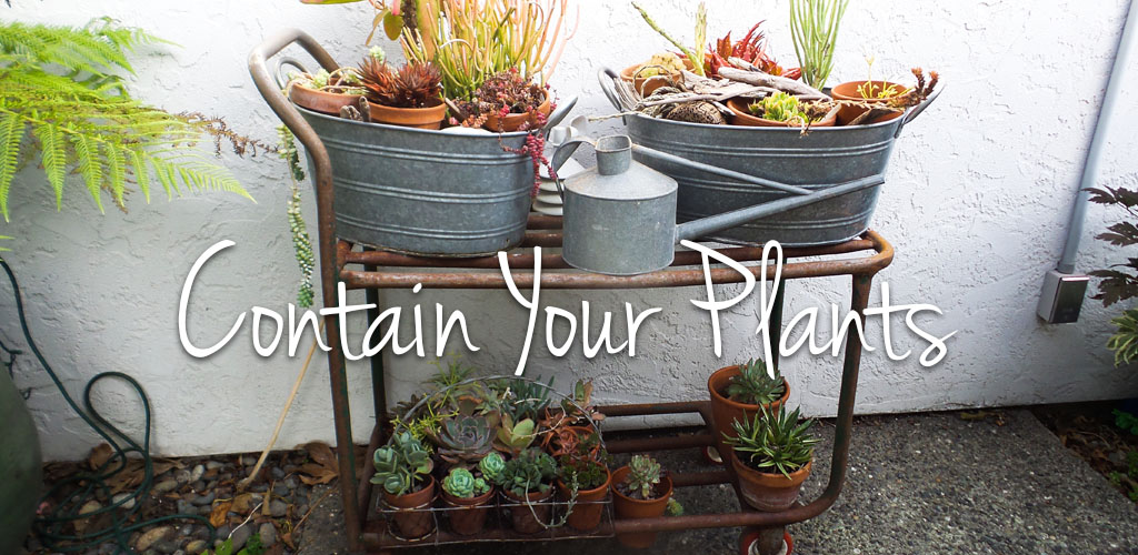 Contain Your Plants