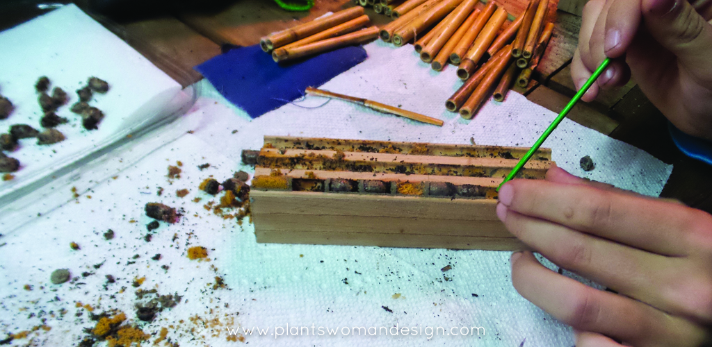 how to harvest mason bees