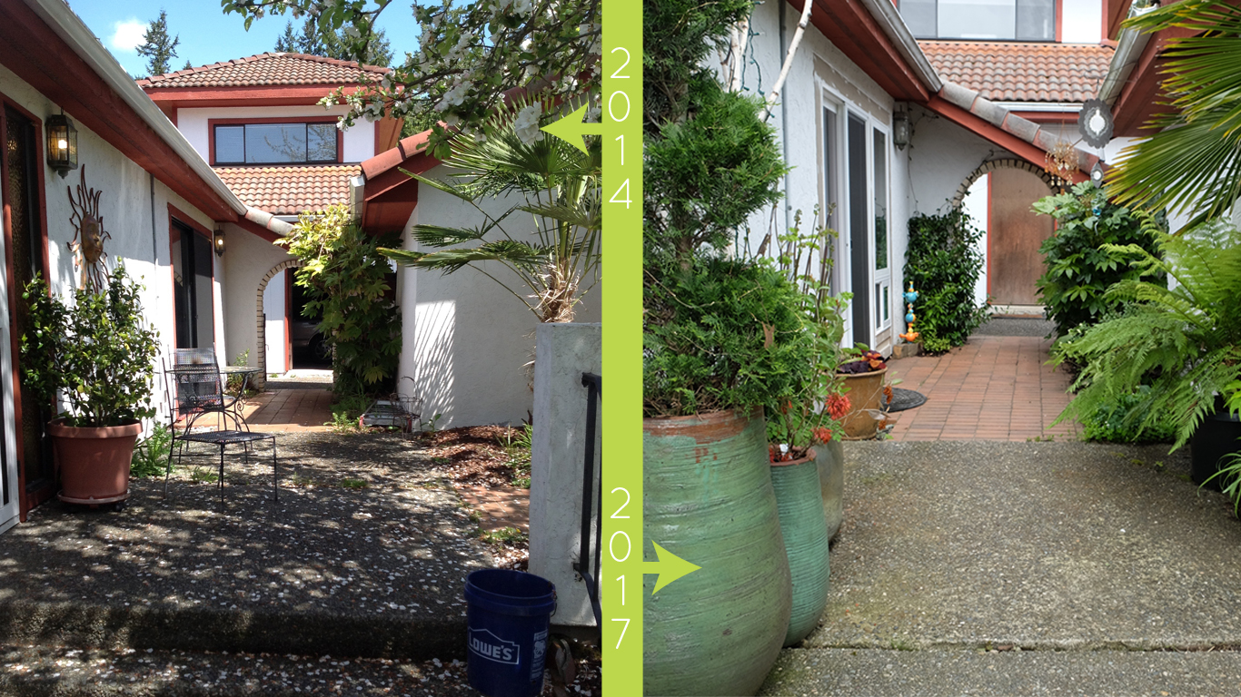 plantswoman design before/after of Beach Road Garden walk ways